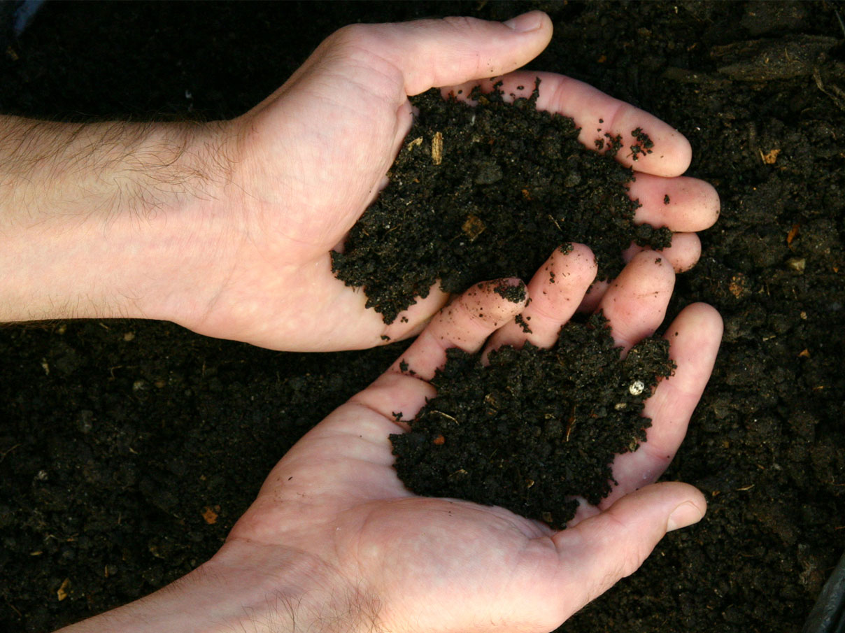 A person's hands covered in soil.